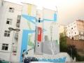 Mural u Djure Jaksica 3